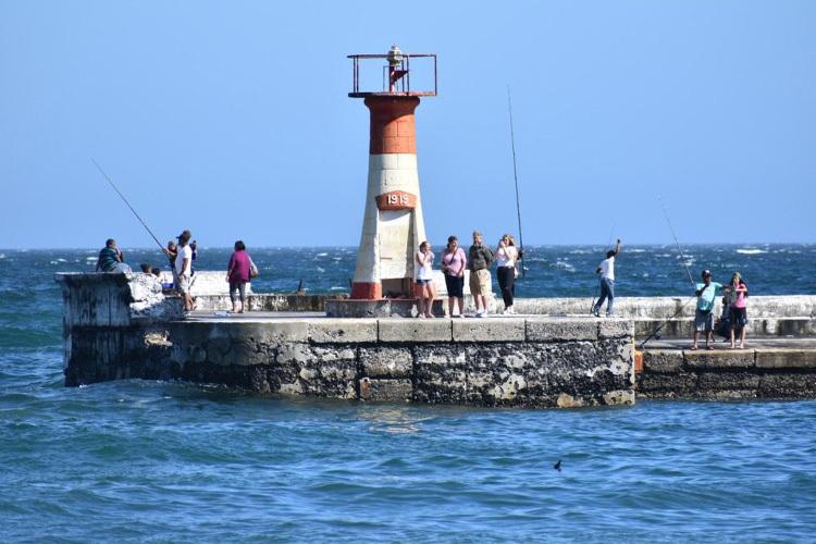 to-do-kids-kalk-bay-harbour