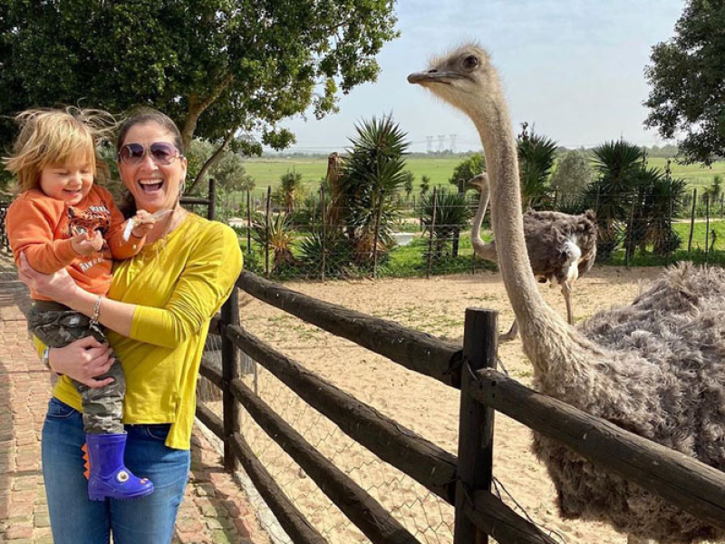 to-do-kids-cape-town-ostrich-ranch
