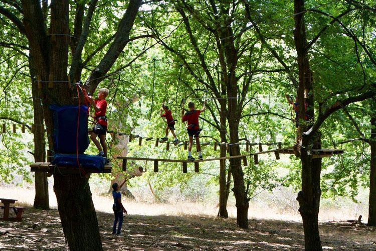 zipzoom-adventures-to-do-kids