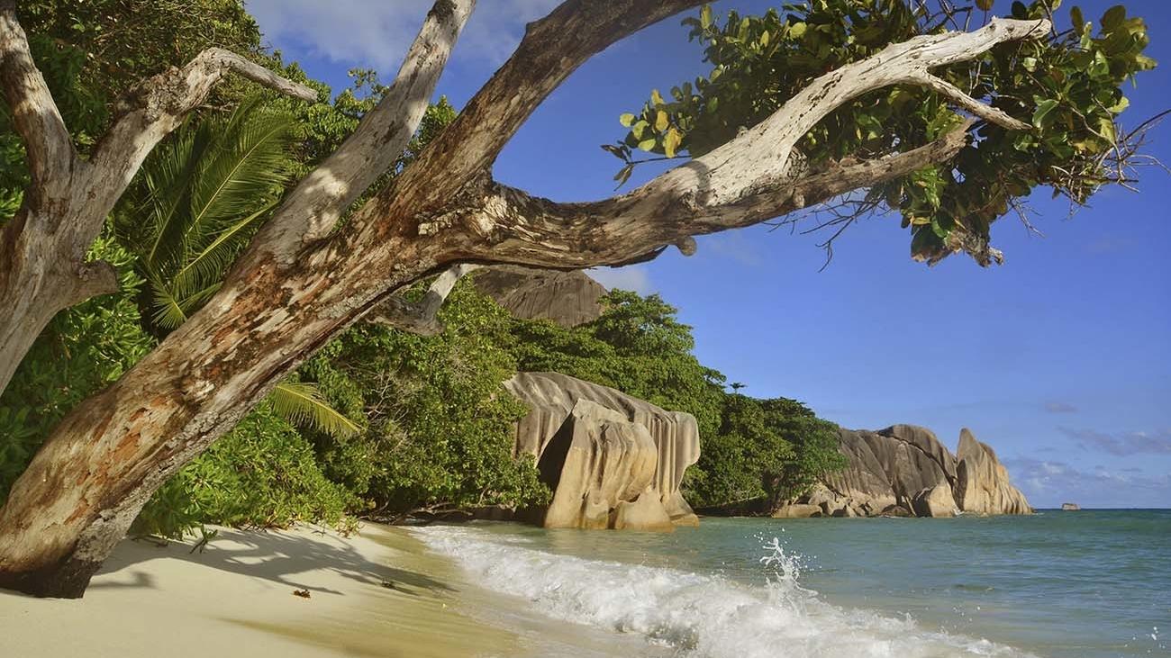 buurlanden-seychellen-silhouette