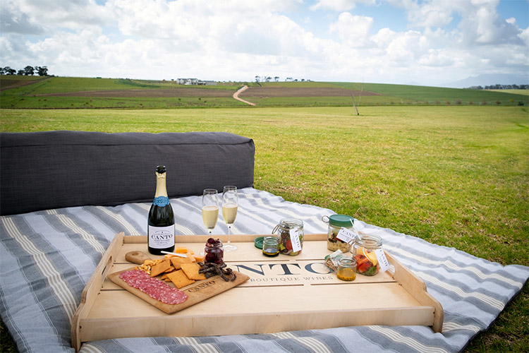 canto-picnic