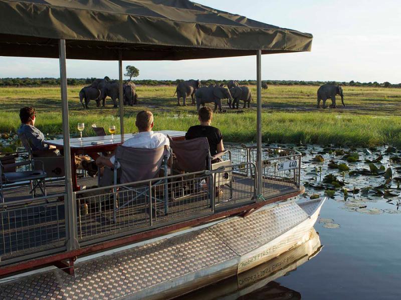 chobe-game-lodge-botswana-river-safari