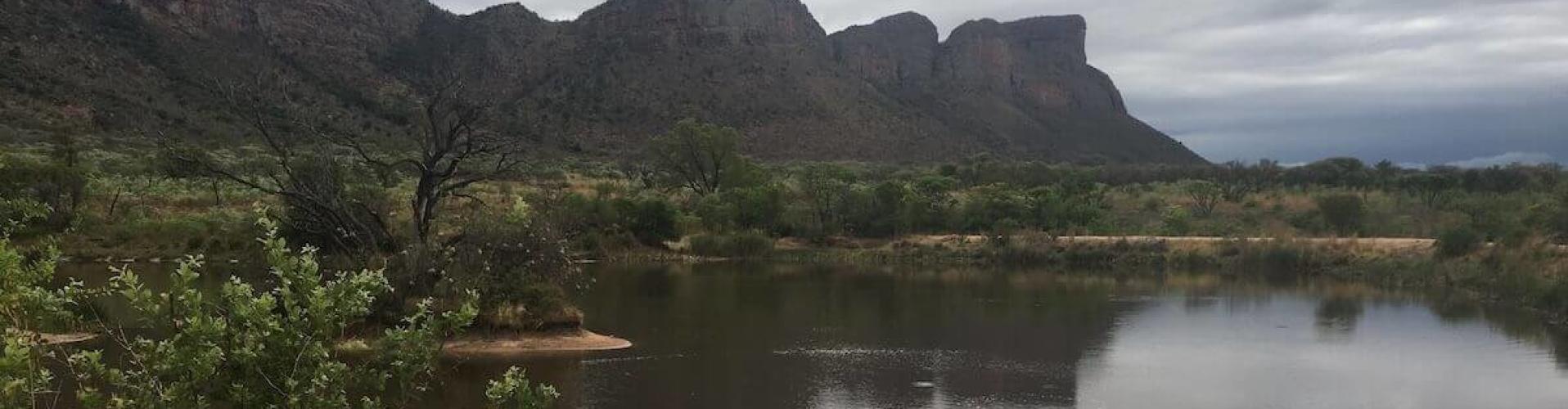 entabeni zuid afrika game reserve