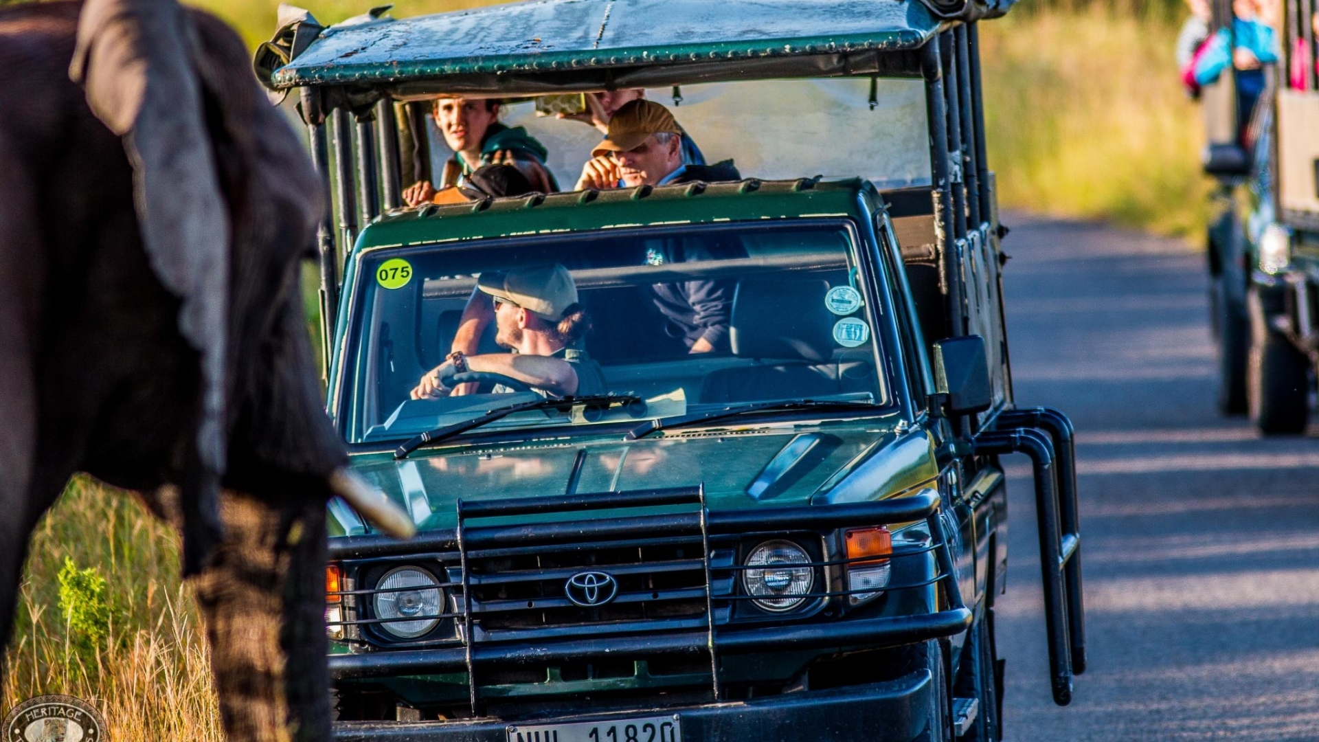 half-day-big-5-safari-to-hluhluwe-imfolozi-park