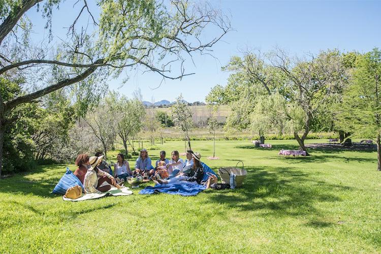 hartenberg-picnic-spots-stellenbosch