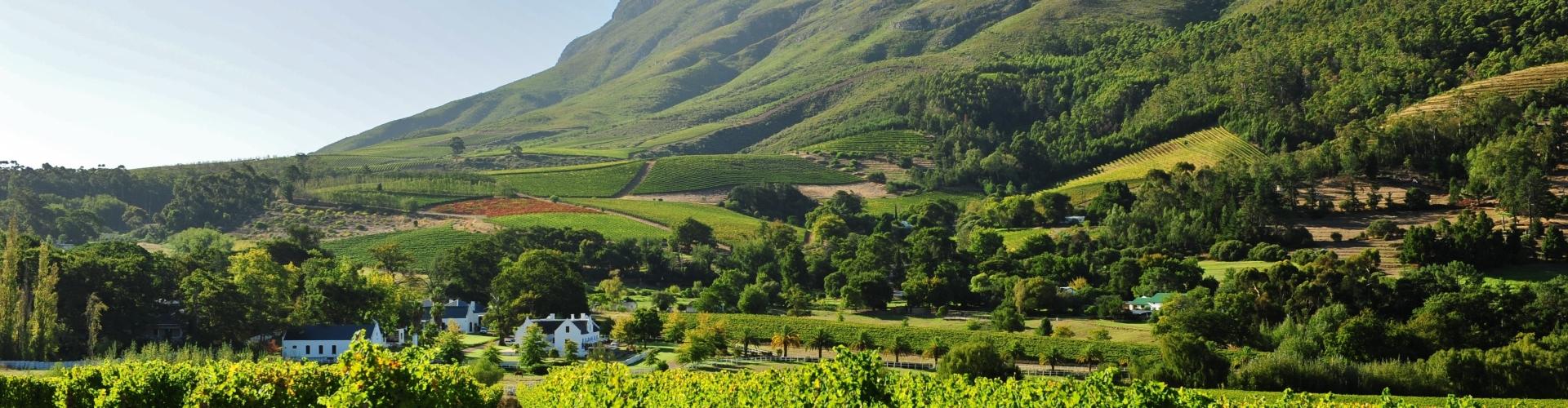helicopter-tours-in-zuid-afrika-franschhoek-wijnlanden