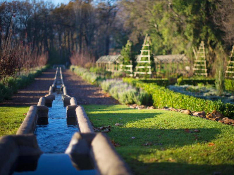 irrigation-of-vegetable-herb-garden-at-boschenda