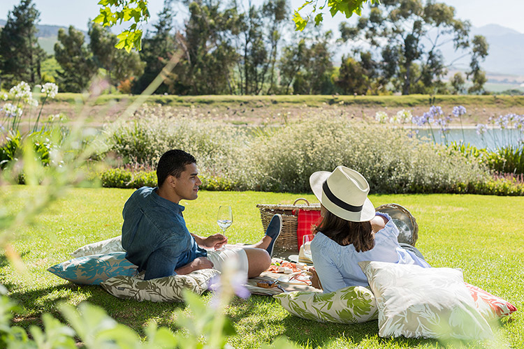 jordan-wine-estate-picnics-stellenbosch