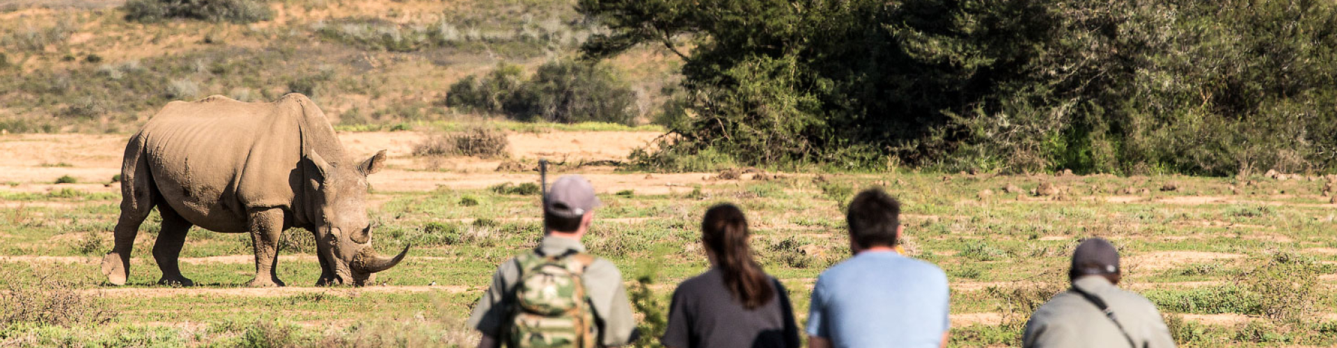 kwandwe-game-reserve-zuid-afrika-big-five-neushoorn