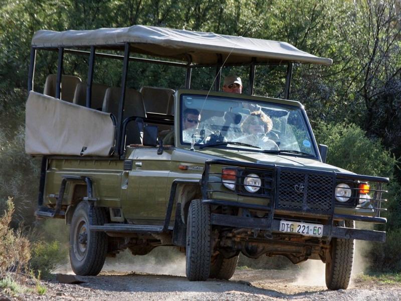 safari-south-africa-gamedrive