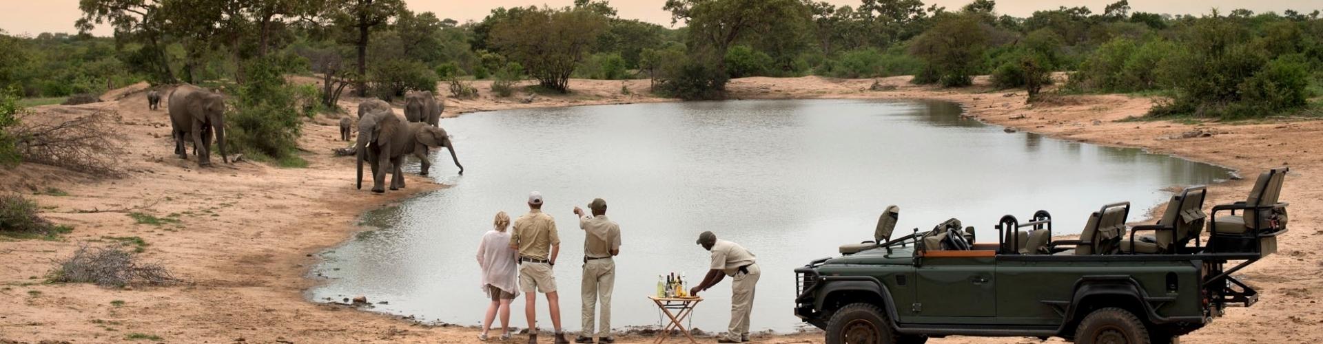 safarireizen-zuid-afrika-timbavati-header