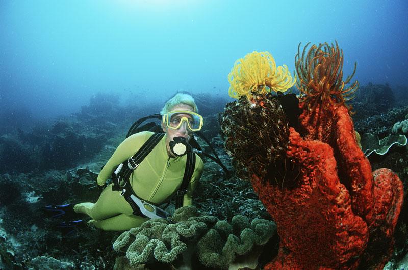scuba-diving-zuid-afrika