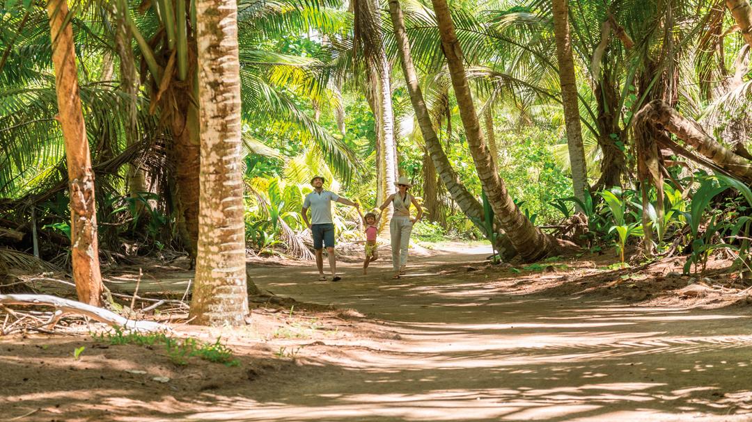 buurlanden seychellen zuid afrika boswandeling