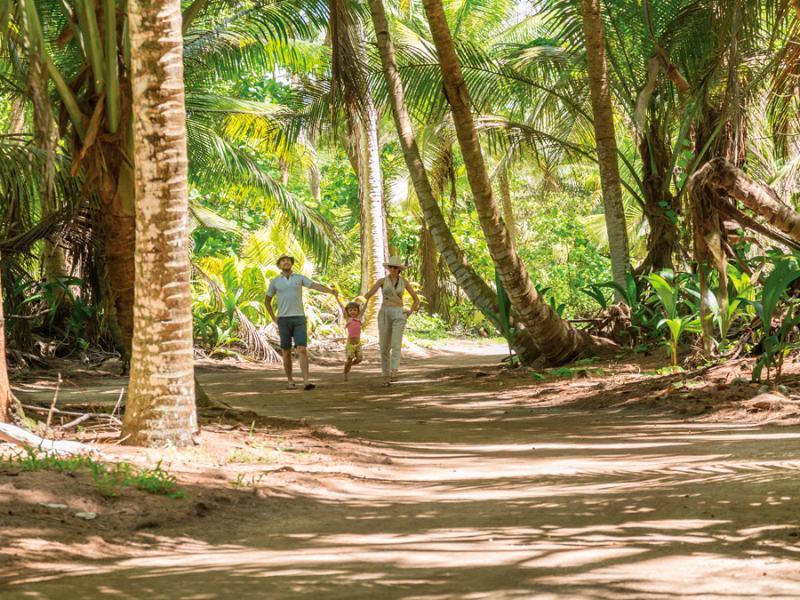 seychellen-boswandeling