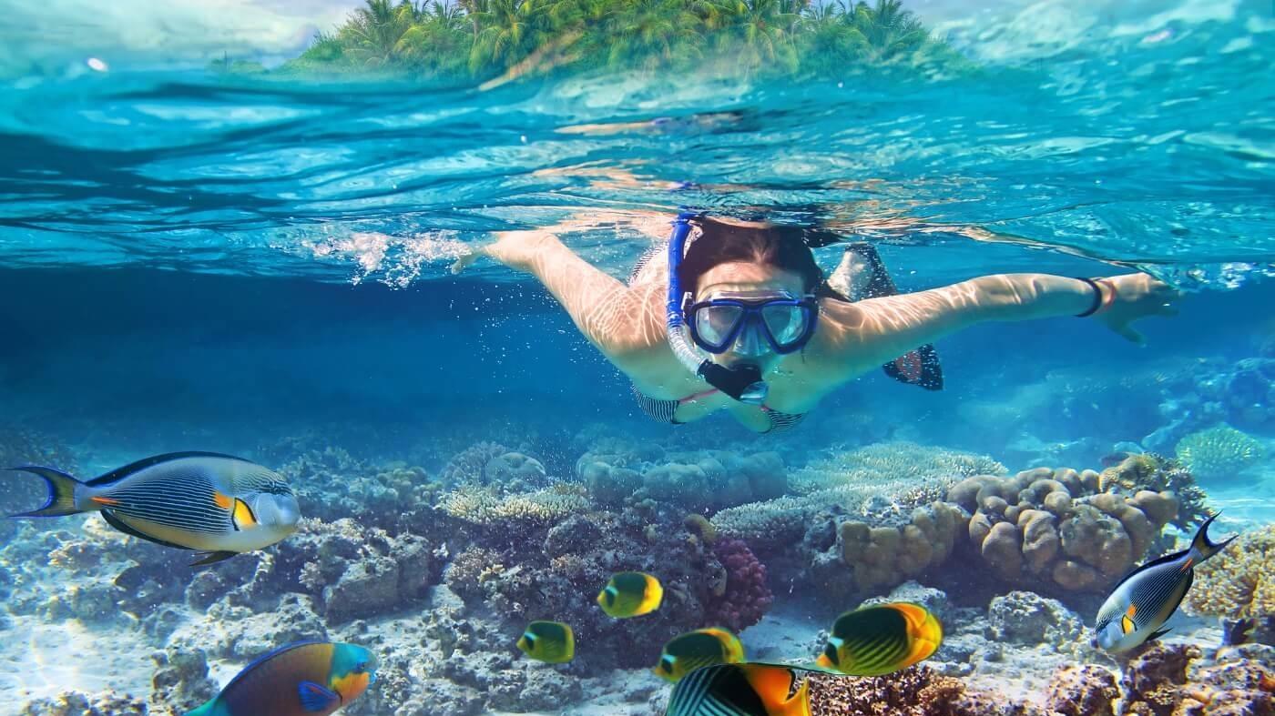 seychellen-duiken-zuid-afrika