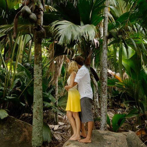 seychellen romantiek boswandeling
