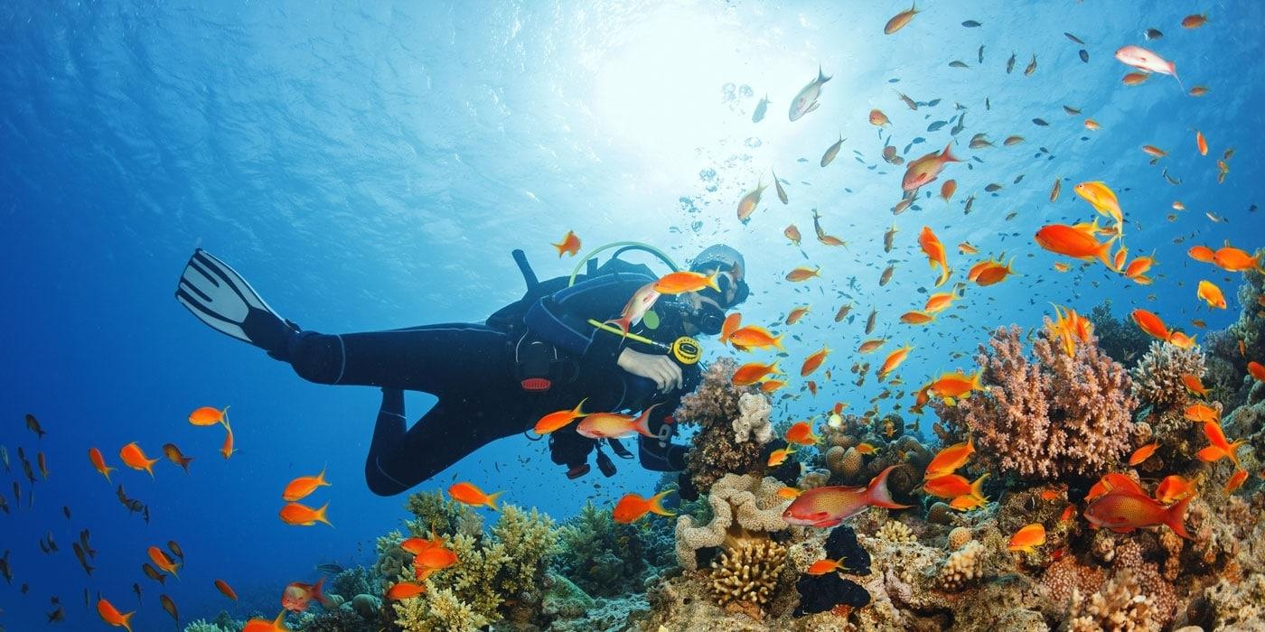 sodwana-bay-snorkelen