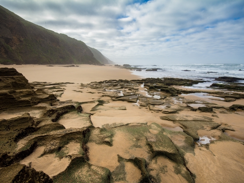 wild-coast-garden-route-south-africa