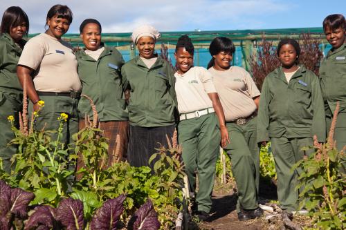 fair-trade-rerizen