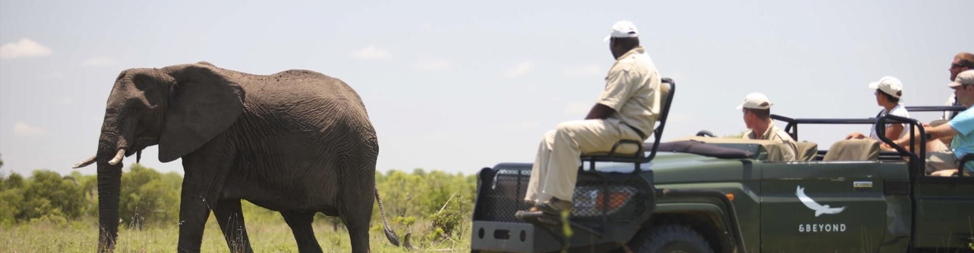 header-ngala-game-reserve-safari-zuid-afrika-1920x500-1