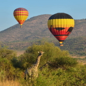 hete-luchtballon-safari-in-zuidelijk-afrika