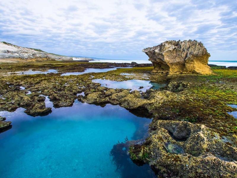 marine-protected-areas-south-africa-de-hoop