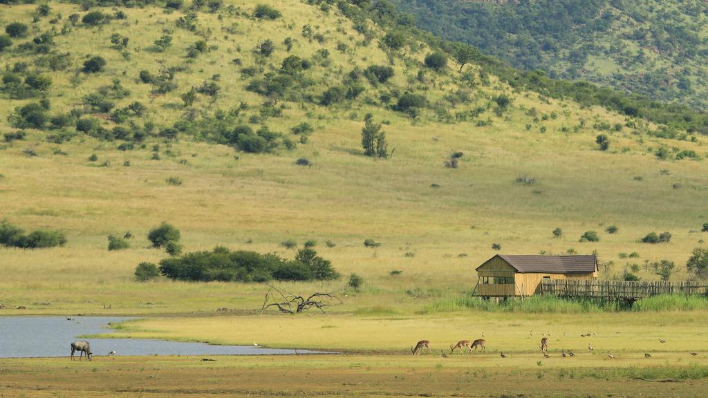 pilanesberg National Park Zuid-Afrika