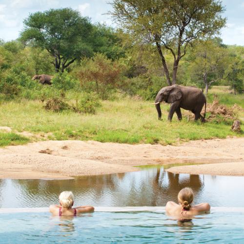 Waar op Safari in Zuidelijk Afrika?