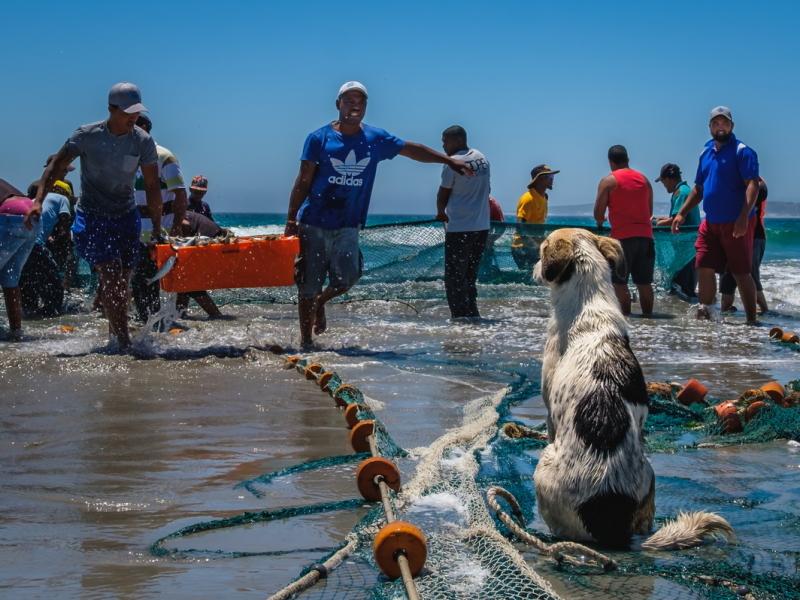 Paternoster West Coast Zuid-Afrika vissersdorp