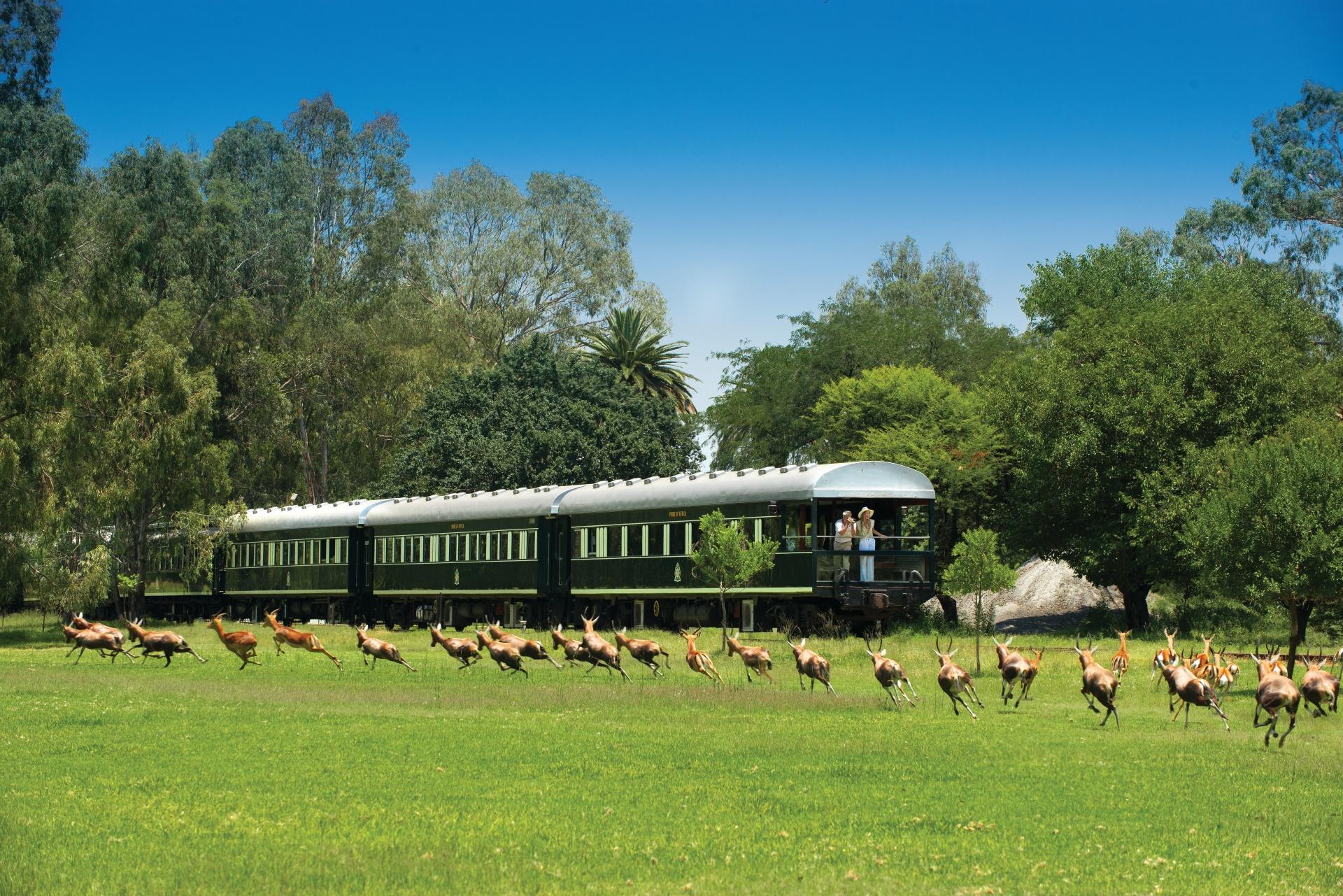 rovos-rail-luxe-treinreizen-zuid-afrika