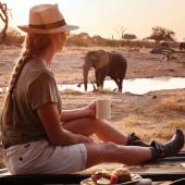 Verschillende soorten safari