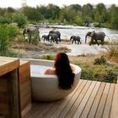 Wat te doen in een safari lodge?