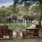 Olifant safari in Zuidelijk Afrika