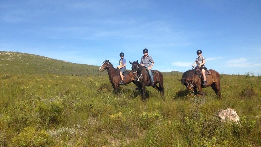 tsitsikamma-national-park-zuid-afrika-paardrijden