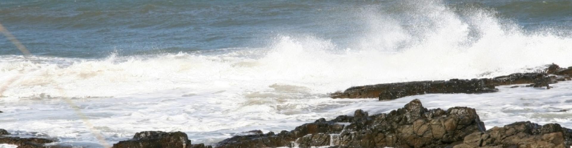 WIld Coast Beaches
