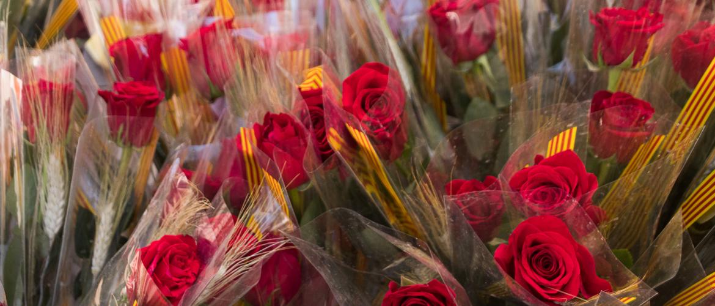 Dia de Sant Jordi, festival of the book & rose