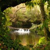Verblijf op een magische plek in de natuur omgeven door bossen en rivieren Portugal