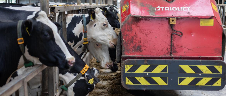 Jonge Landbouwers investering subsidie (JOLA)