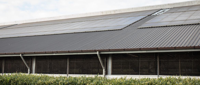 Subsidie voor o.a. zonnepanelen (SDE++)