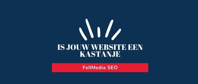 Is jouw website een kastanje?
