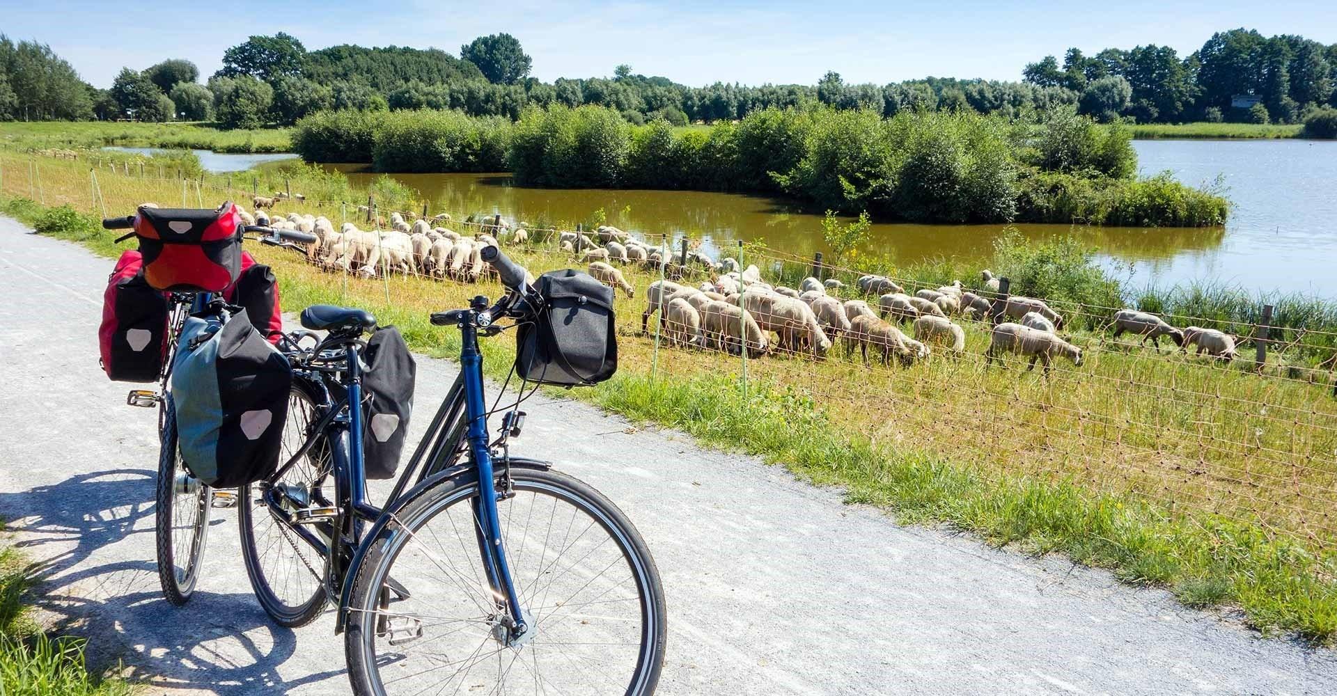 Fietsvakanties in Hongarije en alle soorten dieren spotten