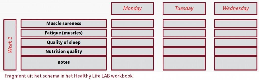 imagetrainingsdagboekwerkboek