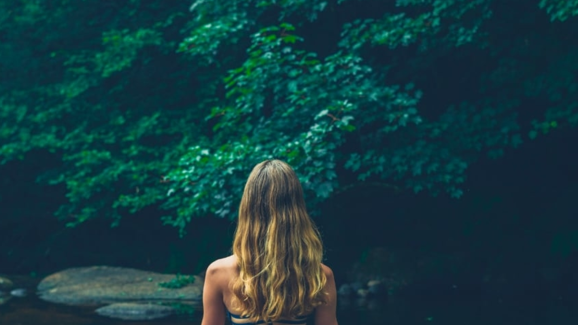 Gratis geleide meditatie   leer mediteren