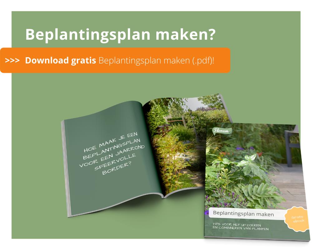 Beplantingplan | Diervriendelijke tuin