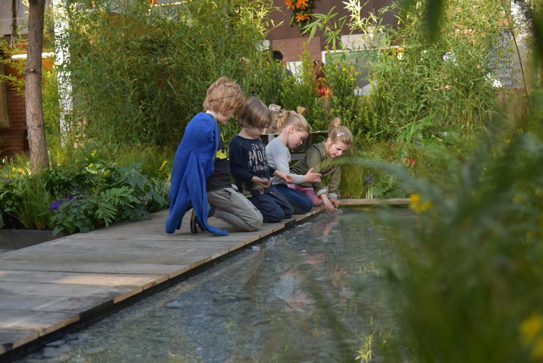 Kindvriendelijke tuin water