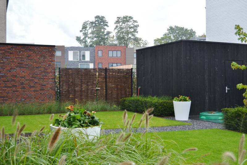 Graszaad in de tuin