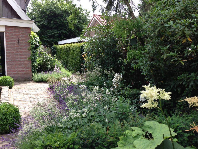 Romantische tuin | Paadje