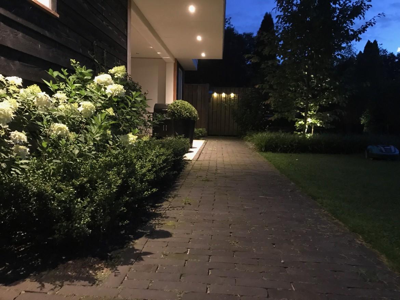 Romantische tuin | Verlichting