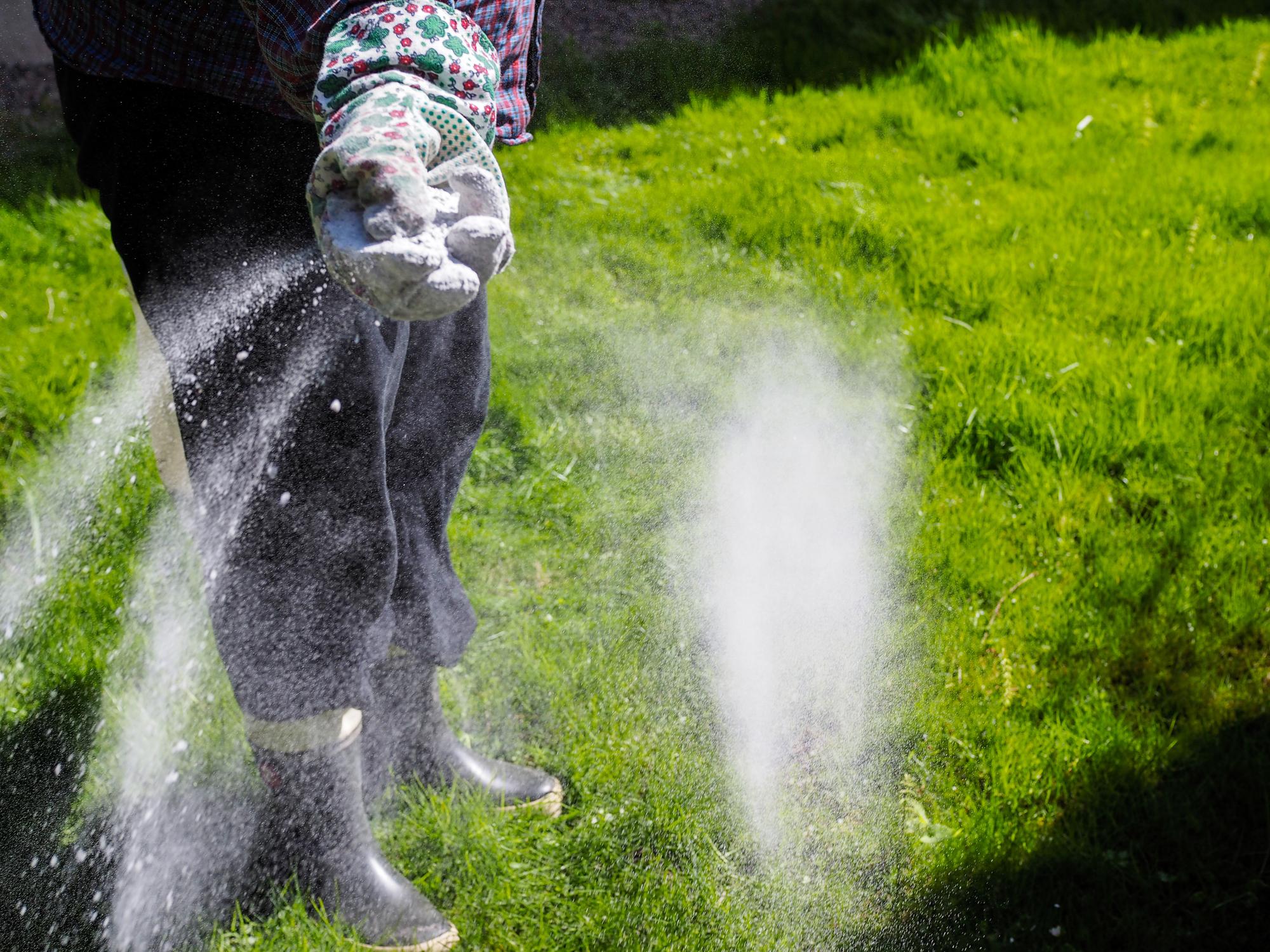 Mest Voor Tuin : Kalk strooien en bemesten wanneer en in welke volgorde?