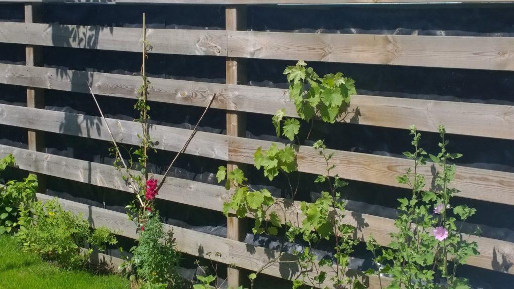 Klimplanten voor schutting. simple langs de schutting pergola of